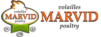 Marvid logo